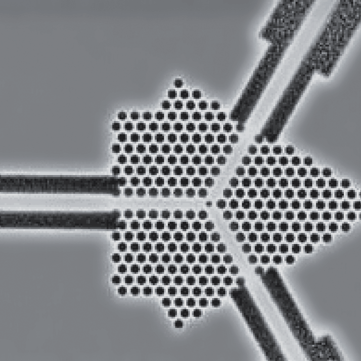 SEM image of InP-based photonics crystals